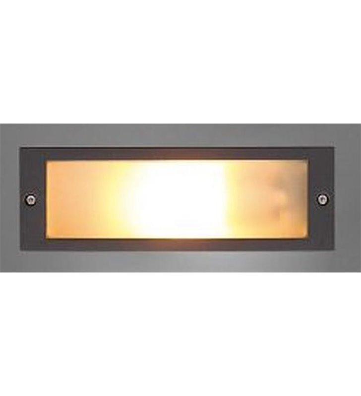 Lampa zewnętrzna do wbudowania w elewację Ina IP65