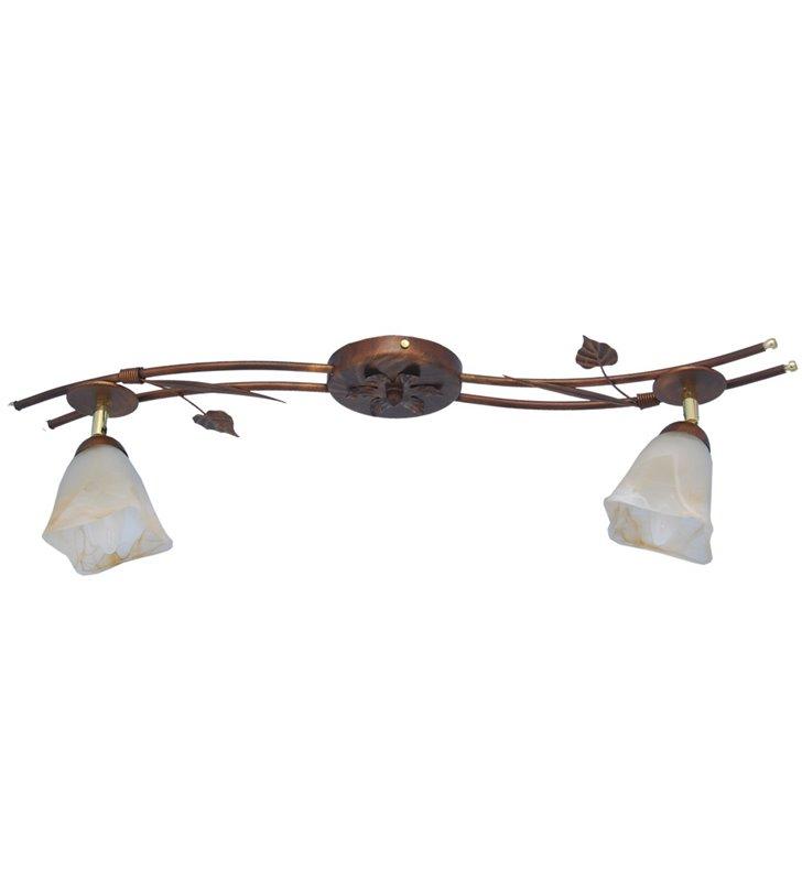 Podłużna klasyczna lampa na sufit Secesja 2 żarówki patyna szklane marmurkowe klosze